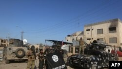 Иракские войска в освобожденном Рамади.