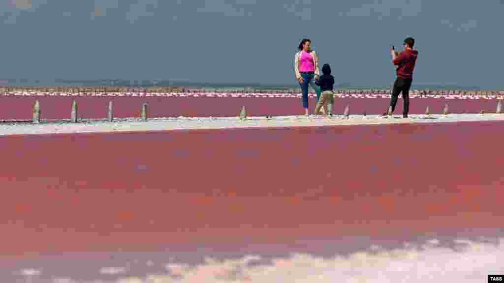 Дехто – щоб сфотографуватися на тлі рожевої водної гладі
