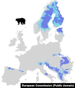 Hartă Comisiei Europene arată unde trăiesc urșii în Europa.