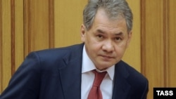 Sergei Shoigu has been Russia's emergency situations minister since 1994.