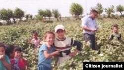 Дети на уборке хлопка. Узбекистан, 15 сентября 2011 года.
