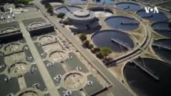 De ce apa din canalizare poate fi utilă în contextul COVID-19