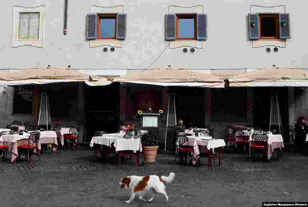 A dog passes in front of an almost empty restaurant in Rome's Trastevere area after a decree that ordered the whole of Italy on lockdown in an effort to stem the coronavirus. (Reuters/Guglielmo Mangiapane)