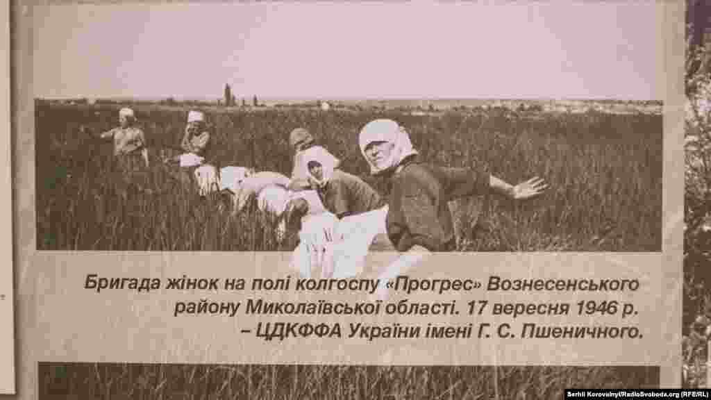 Бригада жінок на полі колгоспу «Прогрес» Вознесенського району Миколаївської області