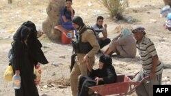 Беженцы из Рамади, Ирак.