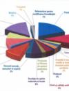 Raportul Curții de Conturi și AEP arată cum au cheltuit partidele banii primiți ca subvenție. Cu toate acestea, partidele sunt zgârcite în a oferi informații despre cum au folosit banii publici.