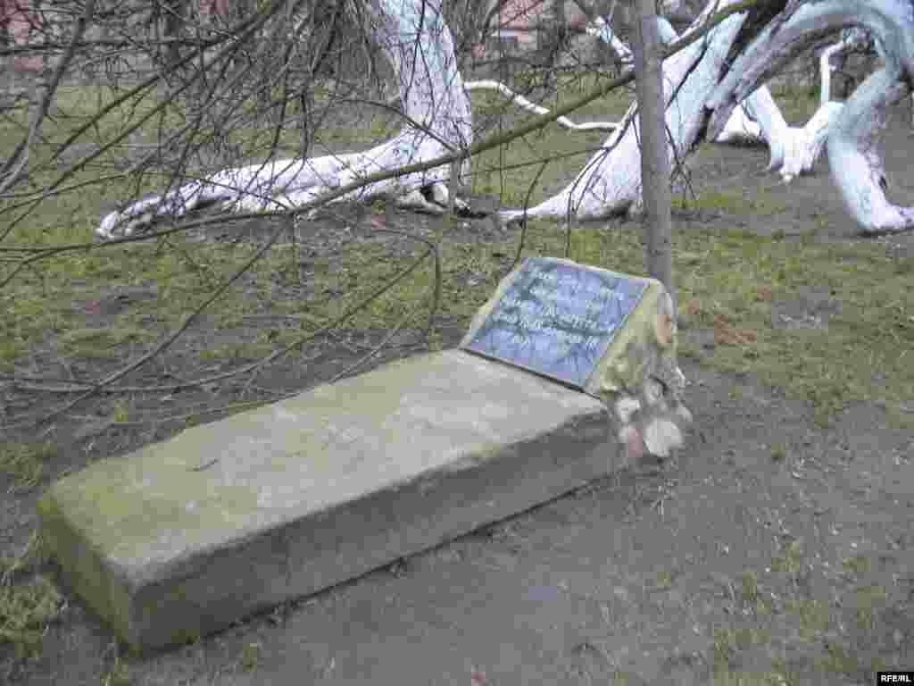 Між стовбурами знаходиться могила князя Петра Мещерського. Звідси інша назва яблуні – «княжа»