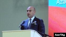 Rəşad Məmmədov, 2013
