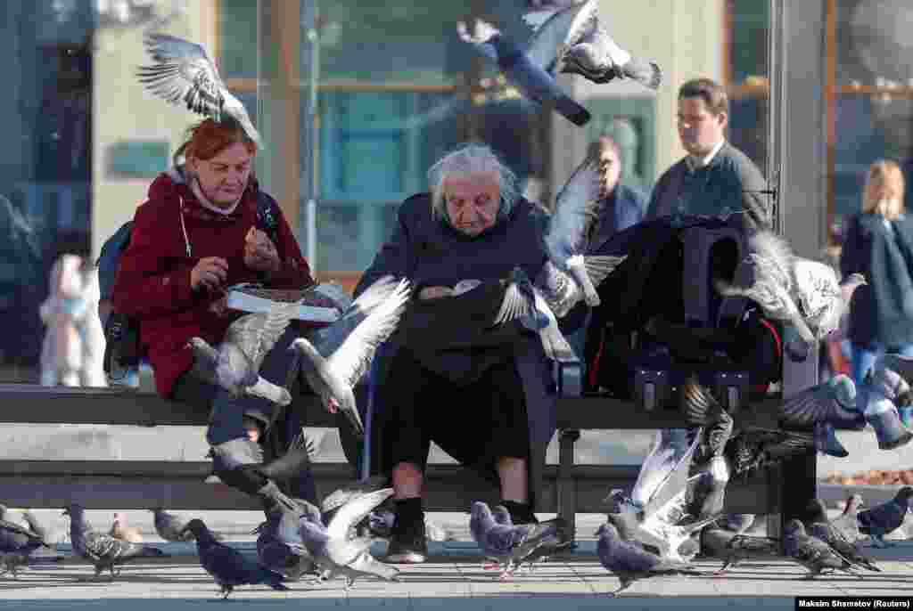 Elderly women feed pigeons at a bus stop in Moscow. (Reuters/Maxim Shemetov)