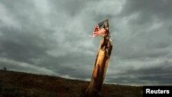 Flamuri i Amerikës
