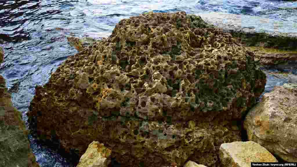 Величезний камінь, з'їдений солоною водою, схожий на шматок пемзи