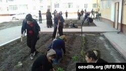 Андижанские учителя сажают цветы перед визитом президента Шавката Мирзияева в Андижанскую область, 6 апреля 2018 года.