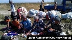 Кыргызские хлопководы. 26 сентября 2012 года.