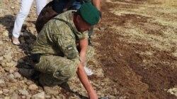 Армянск: испарения, выброс или ракета?   Радио Крым.Реалии