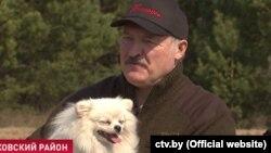 Лукашэнка падчас суботніку ў Петрыкаўскім раёне. 25 красавіка 2020
