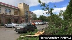 Сломанное ветром дерево в центре Уральска. 29 мая 2017 года.