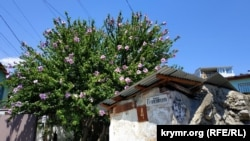 Гурзуф в июле: пересохшая Авунда, жилье в аренду и малолюдные пляжи (фотогалерея)