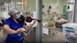 Një infermiere sjellë shpresë me violinë tek pacientët me COVID-19