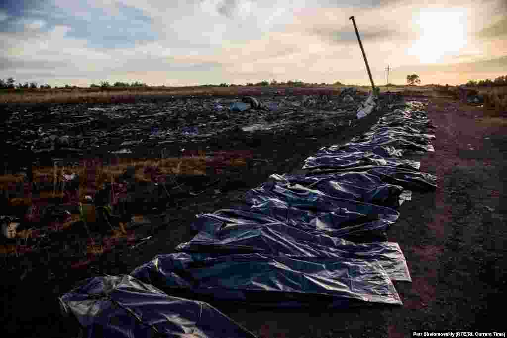 Body bags are lined up near the crash site on July 20, 2014.