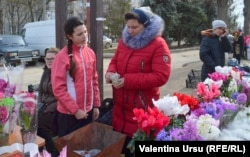 Flori la Rezina