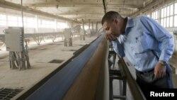 Астық өңдейтін кәсіпорын қожайыны жұмыс процесін қадағалап тұр. (Көрнекі сурет)