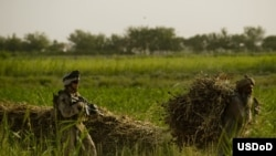 A U.S. Marine walks behind an Afghan farmer in the Garmsir district of Helmand Province.