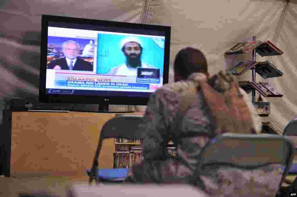U.S. Marines in Helmand Province watch the television announcement of the death of Osama Bin Laden on May 2, 2011, at the hands of U.S. forces.