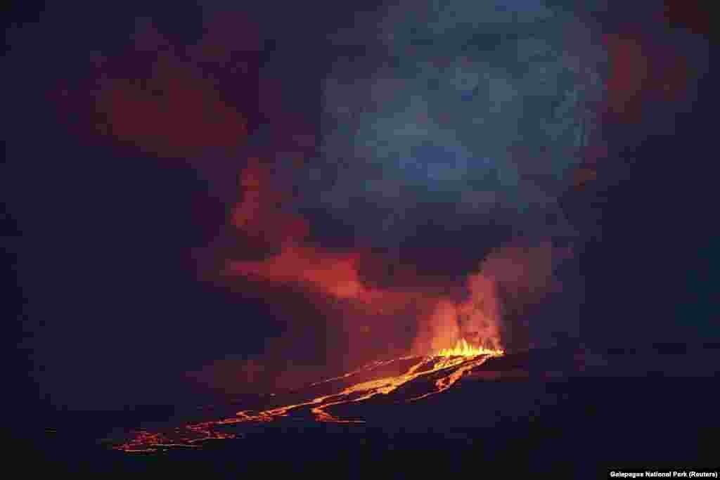На фото - извергающийся вулкан Вольф, который располагается на на одном из Галапогосских островов в Эквадоре. Извержение произошло в конце мая, поставив под угрозу множество редких видов животных, обитающих только там