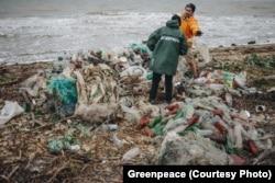 Экспедиция Greenpeace, Азовское море