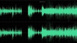 Interviu audio Horia Nasra