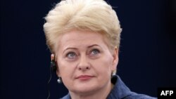 Президент Литвы Даля Грибаускайте. Страсбург, 3 июля 2013 года.