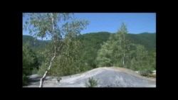 Zlatna groznica