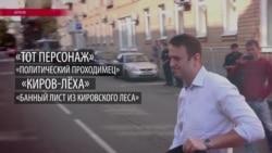 Как российская власть отвечает на расследования Алексея Навального (видео)