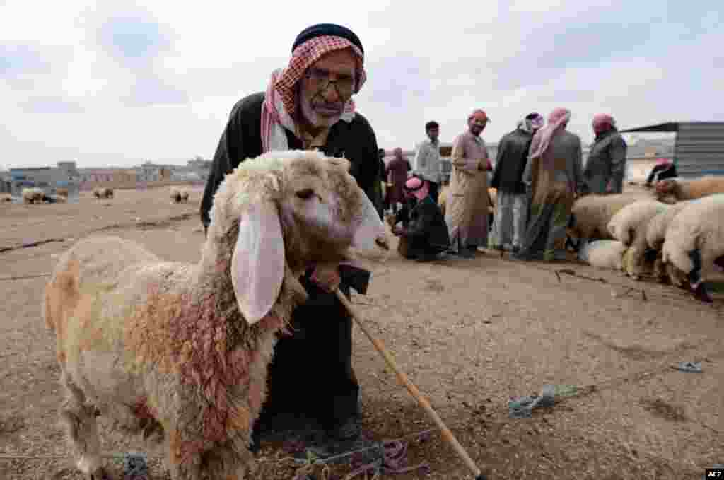 A Syrian man with a sheep at a market set-up on the outskirts of the northern city of Aleppo.