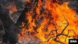 آتشسوزی در جنگلهای کوهدشت استان لرستان
