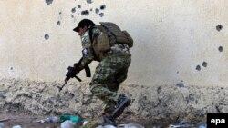 سرباز ارتش عراق در نزدیکی رمادی