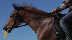 Kadırovun atları Çexiya bayrağı altında yarışır