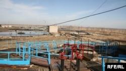 «Северо-Казахстанская распределительная электросетевая компания». Петропавловск, ноябрь 2008 года.