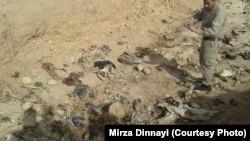 مقابر جمعية خلفها تنظيم داعش في منطقة سنجار