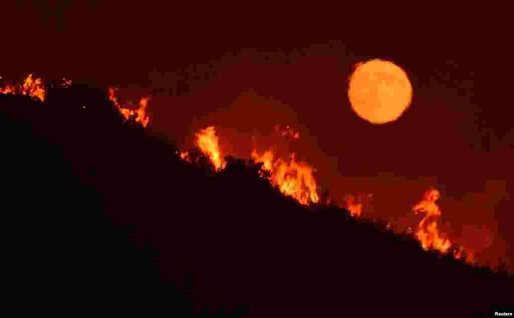 Причиной возгорания стали высокая температура и низкая влажность воздуха