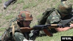 Военные эксперты отмечают, что у института резервистов в Грузии проблемы системного характера: нет четкой политики и плана