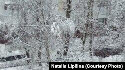 Подмосковье в снегу