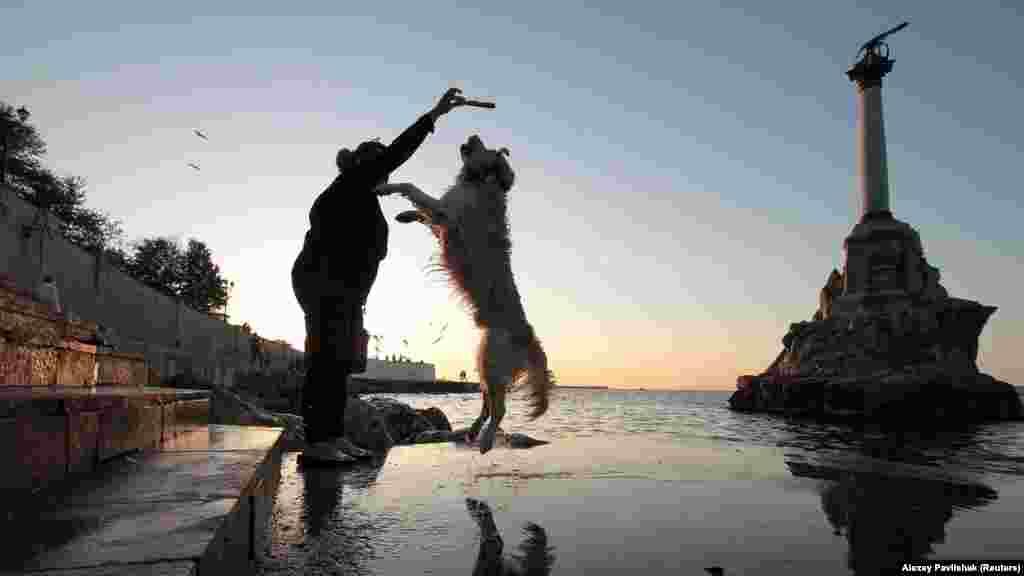 На фоне памятника затопленным кораблям в Севастополе домашний пес резвится со своей хозяйкой