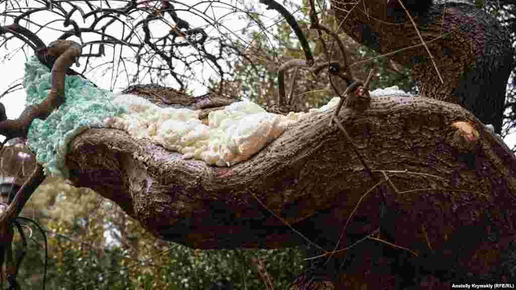 Дупла на старых софорах в парке «дешево и сердито» запломбировали обычной монтажной пеной