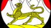 На лого хотели изобразить барса - как на гербе Северной Осетии. Однако окрас предложили слишком пестрый