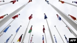 Flags of NATO members hang on their masts in Lisbon