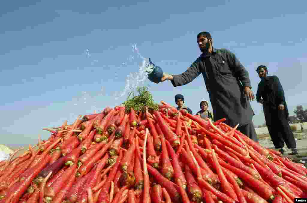 A vendor throws water on a pile of carrots as he waits for customers on the outskirts of Jalalabad, Afghanistan. (Reuters/Parwiz)