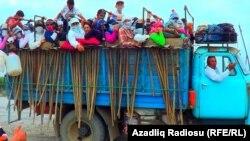 İmişli rayonu, işçilər pambıq sahəsinə aparılır, arxiv foto