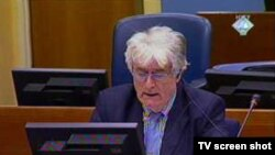 Radovan Karadžić tokom na suđenju u Hagu, 28 septembar 2010.