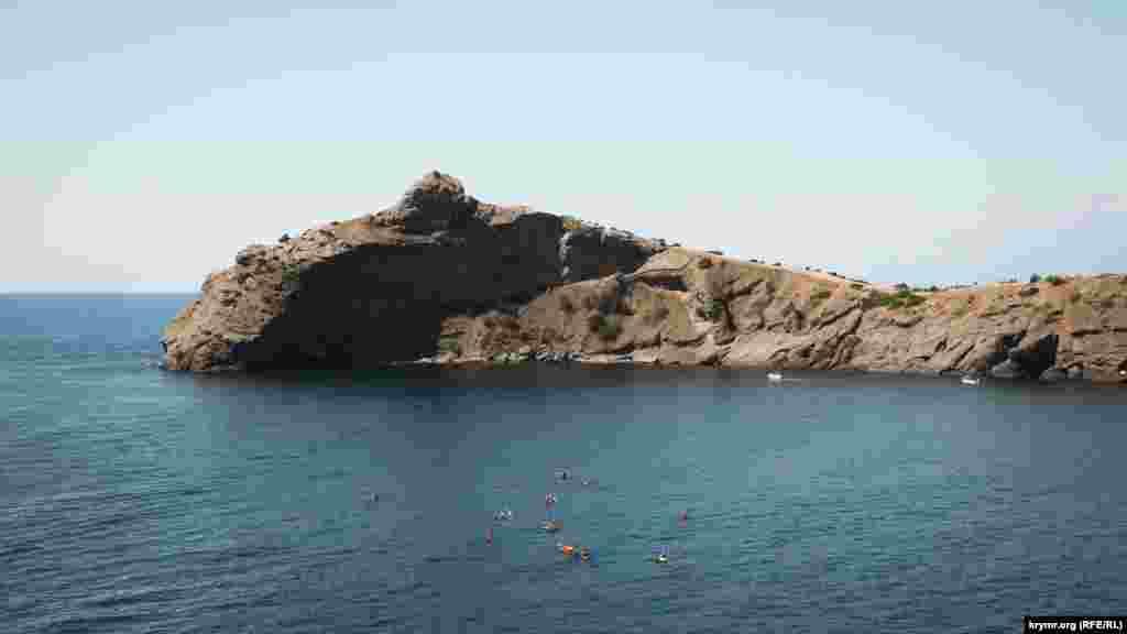 Мис Капчик (Дельфін) приваблює не тільки сухопутних туристів, а й морських